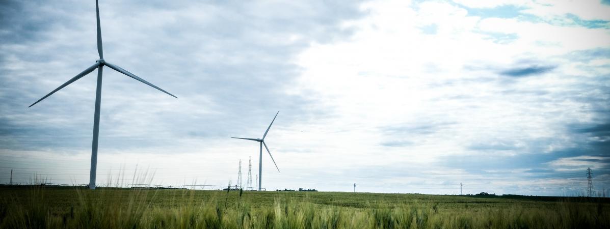 Éoliennes : le bras de fer d'un couple pour faire reconnaître leurs effets sur la santé
