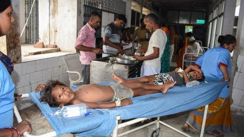 Inde: 118enfants meurent d'encéphalite mortelle, des litchis probablement en cause
