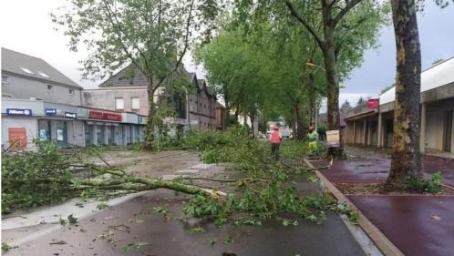 VIDEO. Haute-Saône : toitures endommagées, arbres arrachés... Les orages font des dégâts dans les environs de Gray