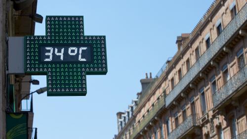 """Canicule : """"Les températures maximales seront atteintes de mercredi à vendredi"""", selon un prévisionniste"""