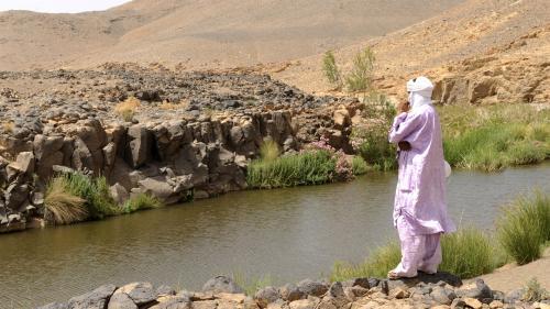 Canicule en Algérie : les températures atteignent 48°C