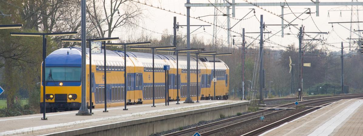 Le rail néerlandais va verser des dizaines de millions d'euros aux victimes de l'Holocauste