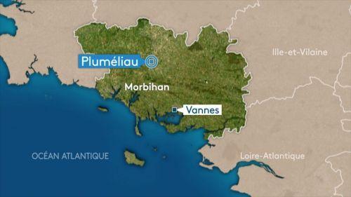 Morbihan : un enfant de 4 ans meurt lors d'une sortie scolaire après avoir reçu une branche sur la tête