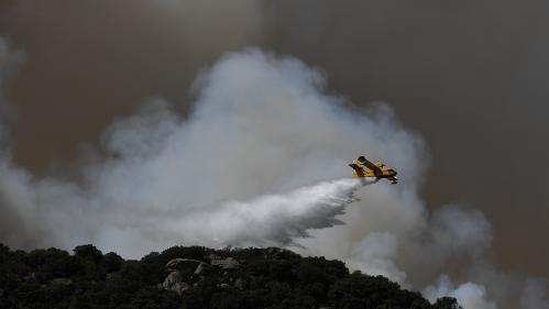 Des feux et des coupures de courant en Europe où la canicule bat des records