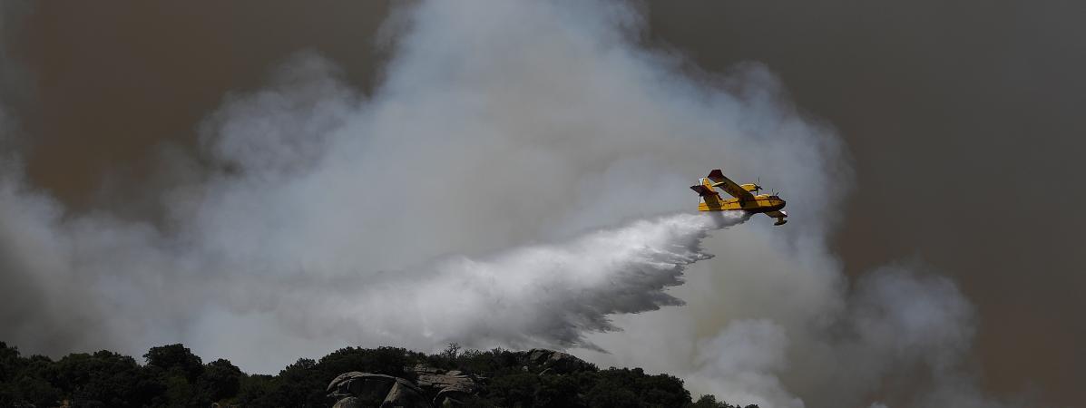 VIDEO. Espagne : près d'un millier d'hectares brûlés par un incendie sur l'île de Grande Canarie