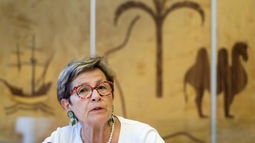 """Affaire Vincent Lambert : sa mère réclame le """"secours"""" de l'ONU et réaffirme que son fils """"n'est pas en fin de vie"""""""