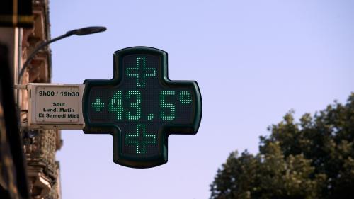 """VIDEO. Canicule : un climatologue prévoit """"des vagues de chaleur de pire en pire"""" sur une période """"de mai à octobre"""""""
