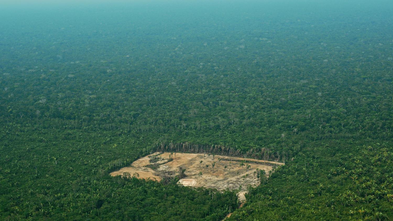 Brésil : la déforestation de l'Amazonie s'est (encore) accélérée au mois de juin