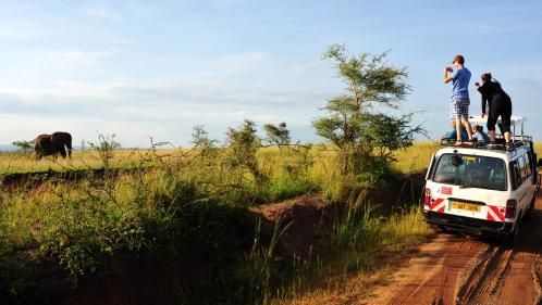 Rhône : épinglés sur les réseaux sociaux pour avoir tué des animaux sauvages en Afrique, les gérants d'un Super U démissionnent