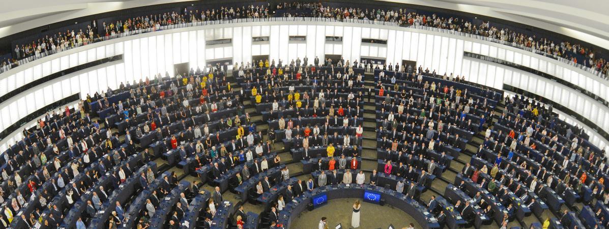 """""""Le Parlement européen n'obéit pas au doigt et à l'œil des chefs d'Etat des pays!"""""""