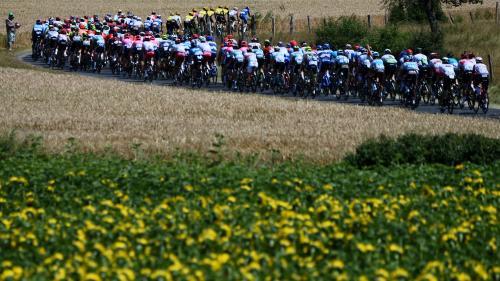 franceinfo junior. Que gagnent les coureurs du Tour de France ?