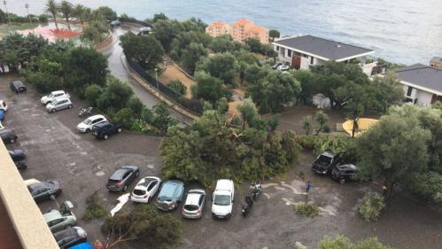 Pluies intenses, fortes rafales de vent, trombe marine... Bastia essuie une tempête spectaculaire