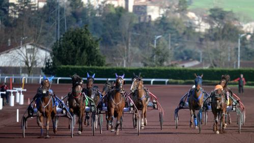 Sarthe : l'un des meilleurs chevaux de course d'Europe meurt en percutant un autre trotteur