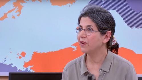 Iran : mystère autour de l'arrestation de la chercheuse Fariba Adelkhah sur fond de tensions diplomatiques