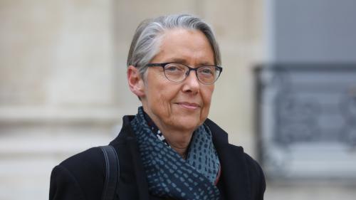 """""""L'écologie est rétrogradée en 2e division"""" : réactions mitigées après la nomination d'Elisabeth Borne au ministère de l'Ecologie"""