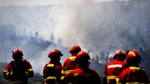 Portugal : 1 000 pompiers luttent contre un nouvel incendie