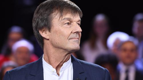 """TRIBUNE. """"Ayez le courage de dire non"""": Nicolas Hulot exhorte les députés à ne pas ratifier le Ceta"""