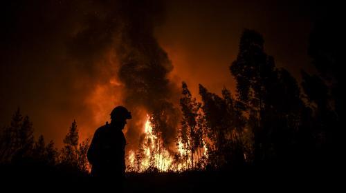Portugal : au moins 30 blessés dans des incendies