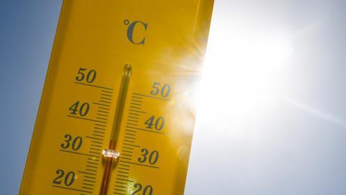 """""""Les températures vont être étouffantes dans les grandes villes la nuit"""" : voici ce que nous réserve la météo cette semaine"""