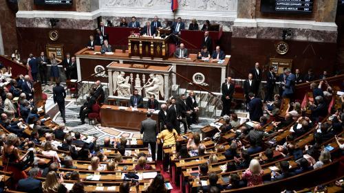 La réforme de la distribution de la presse adoptée par l'Assemblée en première lecture