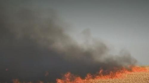 VIDEO. Incendies : le nord de la France désormais concerné