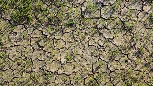 VIDEO. Pénuries d'eau : un épisode de sécheresse sans précédent ?