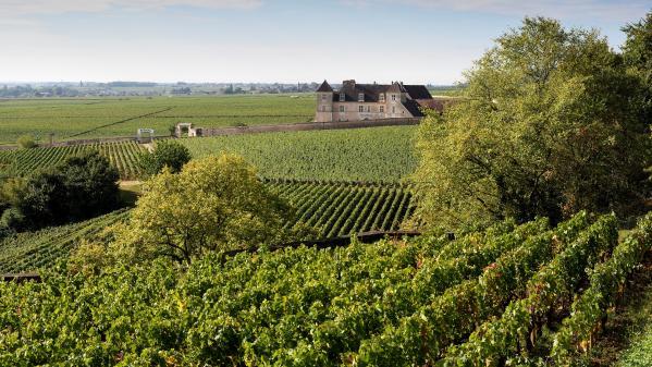 """Menace de Donald Trump sur le vin français : """"C'est très certainement très préoccupant"""""""