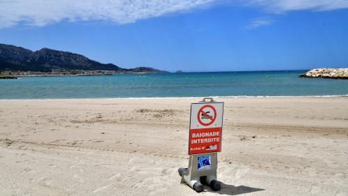 """""""Une mare infecte"""", """"des trucs qui flottent"""" : à Marseille, plusieurs plages ont déjà fermé depuis le début de l'été"""