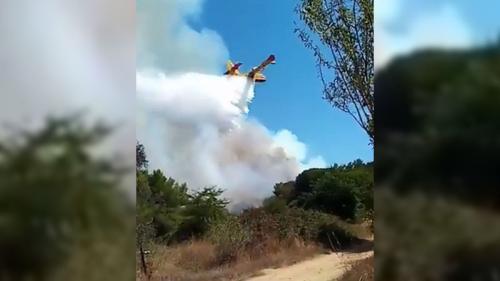 VIDEOS. L'incendie dans le Gard est fixé, 500 hectares partis en fumée