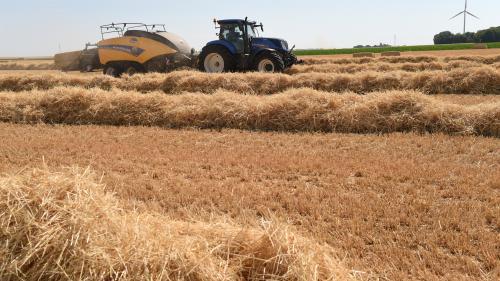 """Mesures contre la sécheresse : """"Ce n'est pas à la hauteur de l'urgence"""""""