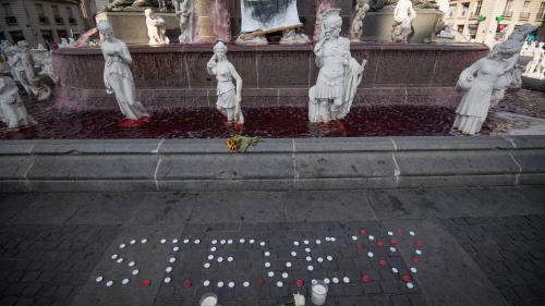 Mort de Steve Maia Caniço : ce qu'il faut retenir du rapport de l'IGPN