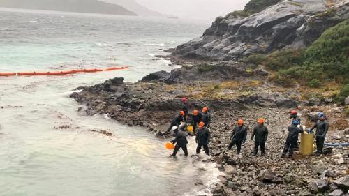 """""""C'est un des derniers sanctuaires marins pour les baleines"""" : au Chili, une île de Patagonie touchée par une marée noire"""