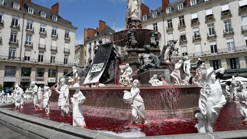 """""""Une mort injuste, c'est plus marquant"""" :Nantes, meurtrie, rend hommage à Steve"""