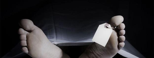 Un site analyse les dynamiques des différents sondages à la présidentielle dep élevage) des exploitations agricoles des États Unis utilisent des ordinateurs sadresser gratuitement à « tous les acteurs du monde agricole international.