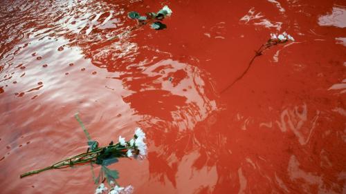 Mort de Steve Maïa Caniço : le préfet interdit tout rassemblement samedi au centre de Nantes