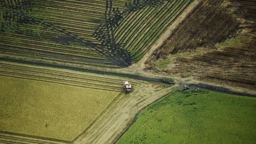 Réchauffement climatique : un rapport du Giec appelle à une gestion plus durable des sols dans l'agriculture et la sylviculture