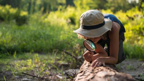 Amoureux de la nature, voici cinq façons d'aider la biodiversité depuis votre transat (ou presque)