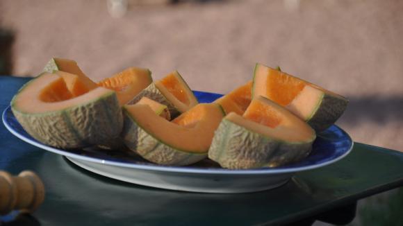 Sur toutes les tables de l'été, le melondécoupé en tranches peut se servir en entrée comme en dessert.