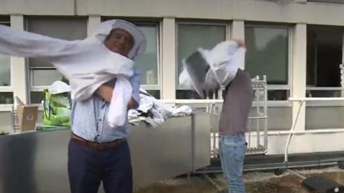 Réfugiés : l'apiculture, un moyen de s'échapper du quotidien