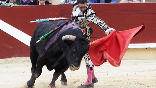 Le ministre de l'Agriculture, en charge de la protection animale, photographié en train d'assister à une corrida