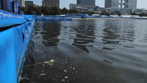 Un an avant les JO 2020 à Tokyo : une épreuve paralympique écourtée en raison de bactéries dans l'eau