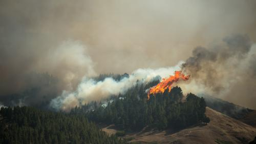 Incendie sur l'île de Grande Canarie : 5 000 personnes évacuées