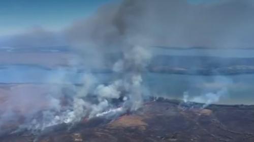 Amazonie : le poumon vert de la planète est en feu