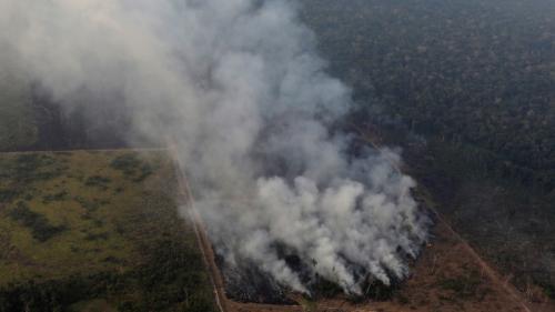 Quatre questions sur l'incendie géant quiravage l'Amazonie