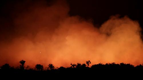 """Incendies en Amazonie : """"Notre maison brûle, littéralement"""", s'alarme Emmanuel Macron"""