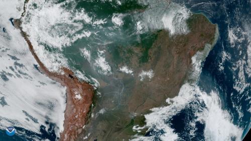 """Une pétition pour """"stopper l'incendie de la forêt amazonienne"""" récolte plus de 2 millions de signatures"""