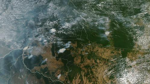 VIDEO. Incendies en Amazonie : les ravages de la déforestation