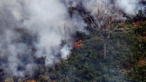 Le président brésilien envoie l'armée pour lutter contre les incendies en Amazonie