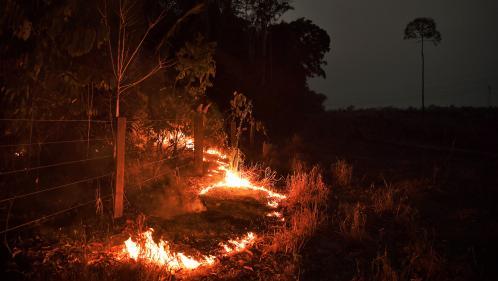 """Incendies en Amazonie : la ministre des Outre-mer et des élus de Guyane réclament """"un fonds international"""""""