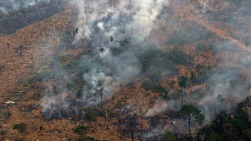 """Aide de 20 millions de dollars pour les feux en Amazonie : """"C'est peu par rapport aux 80000 départs de feu"""""""